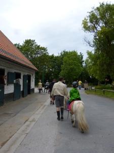 Equitation 6ème séance (6)